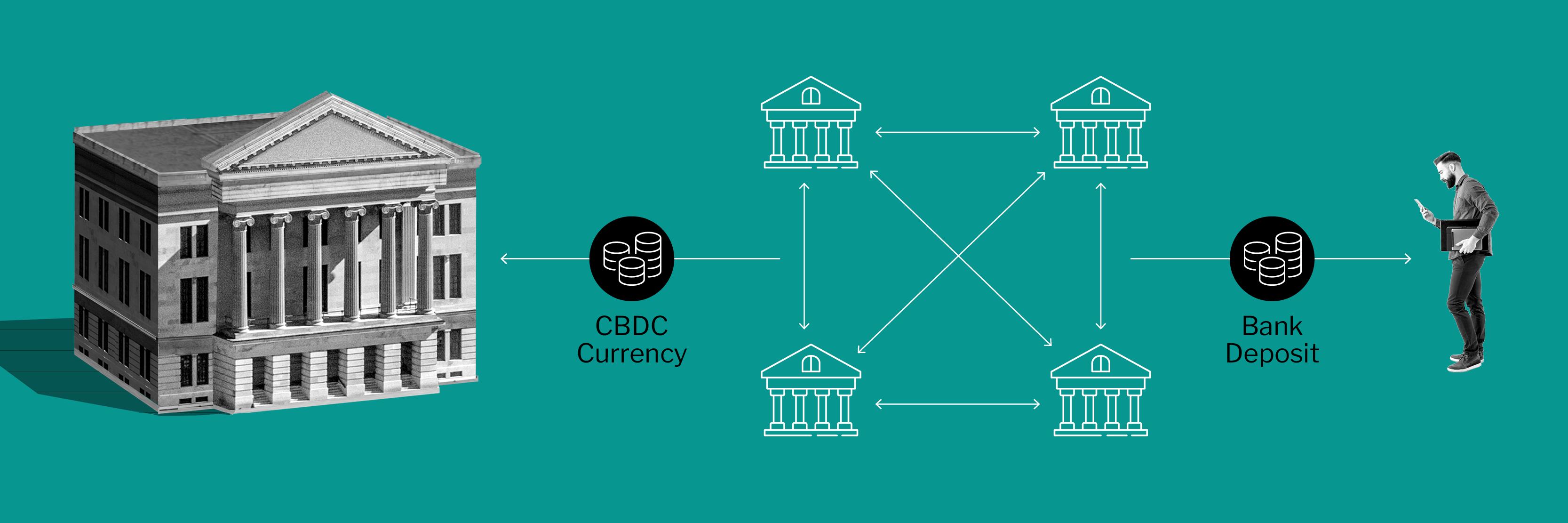 Illustration depicting the wholesale CBDC model