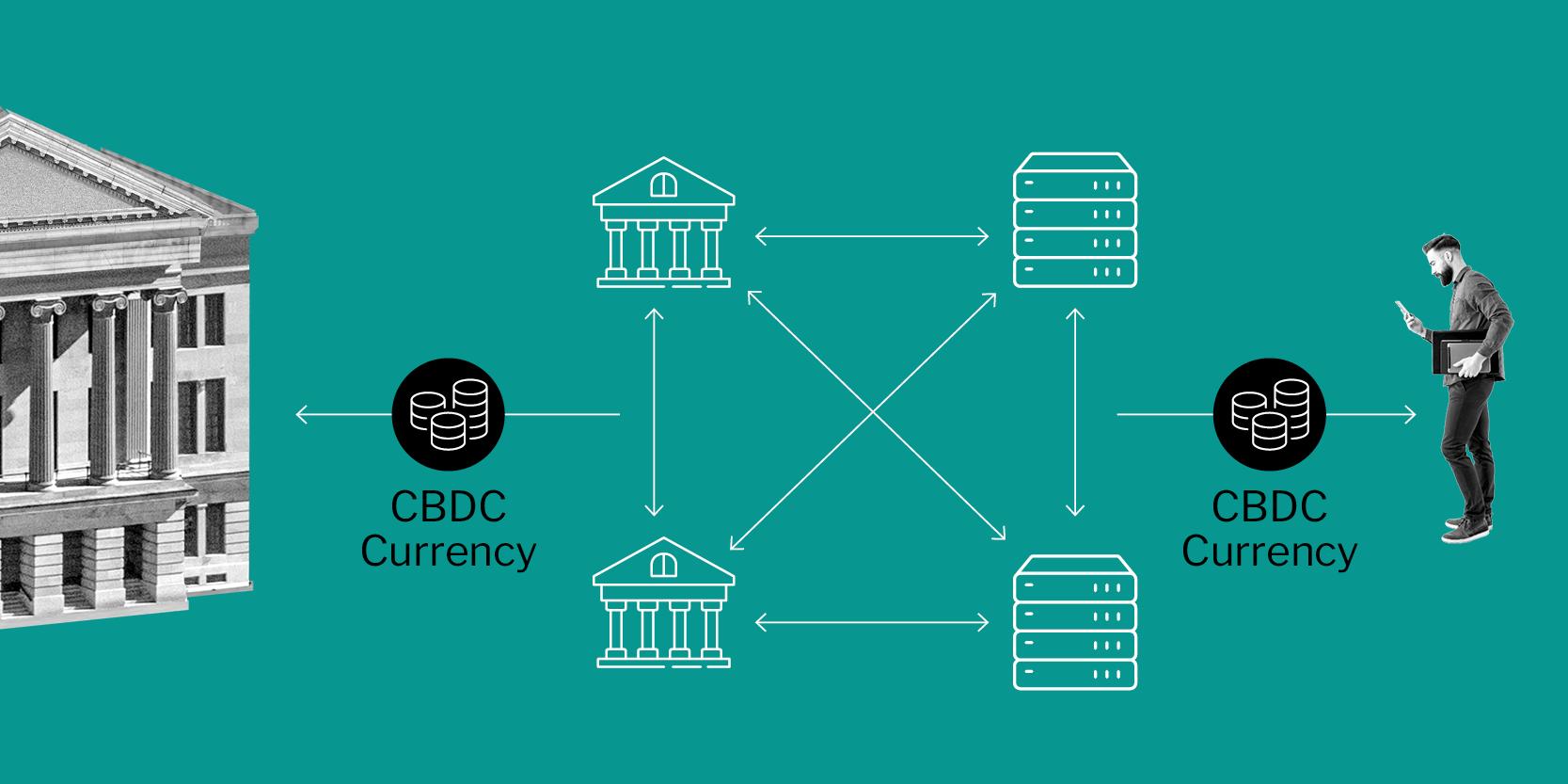 Illustration depicting an intermediated CBDC model