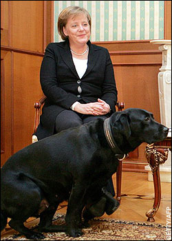 Putin Uses Dog To Intimidate Merkel Foreign Policy