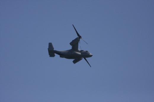 585213_090605_osprey2.jpg