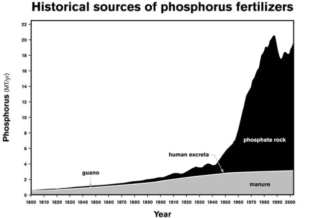 Cordell, D, Drangert, J-O & White, S. (2009), 'The Story of Phosphorus: Global food security and food for thought'. Global Environmental Change, vol 19, issue 2, May 2009, p.292-305