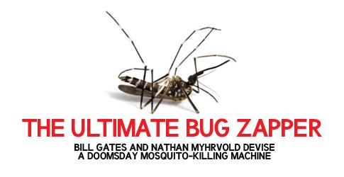 559761_101230_mosquito2.jpg