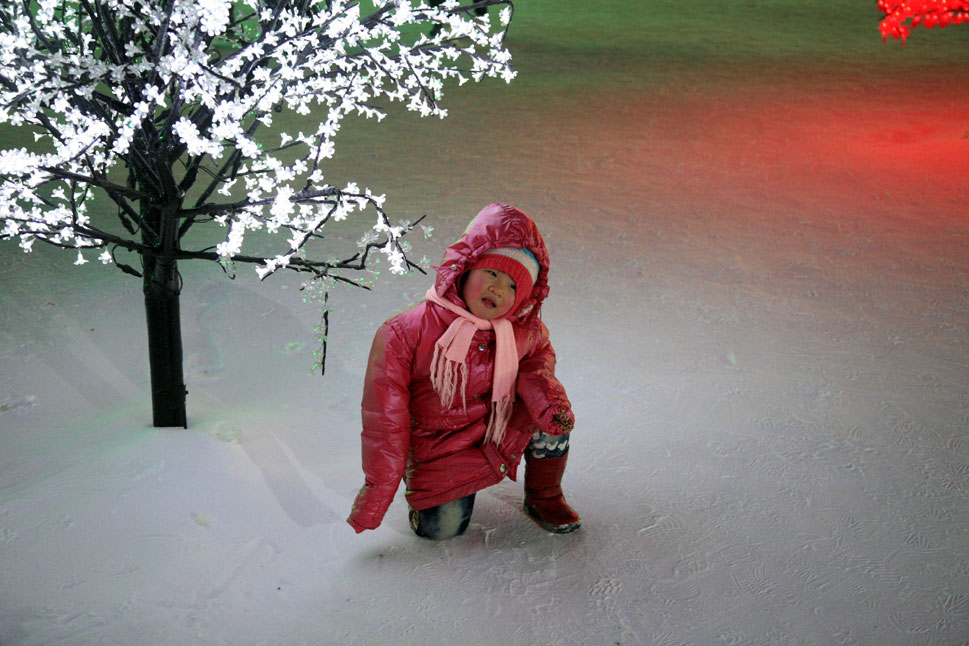 A child beneath a true adorned with frozen foliage.