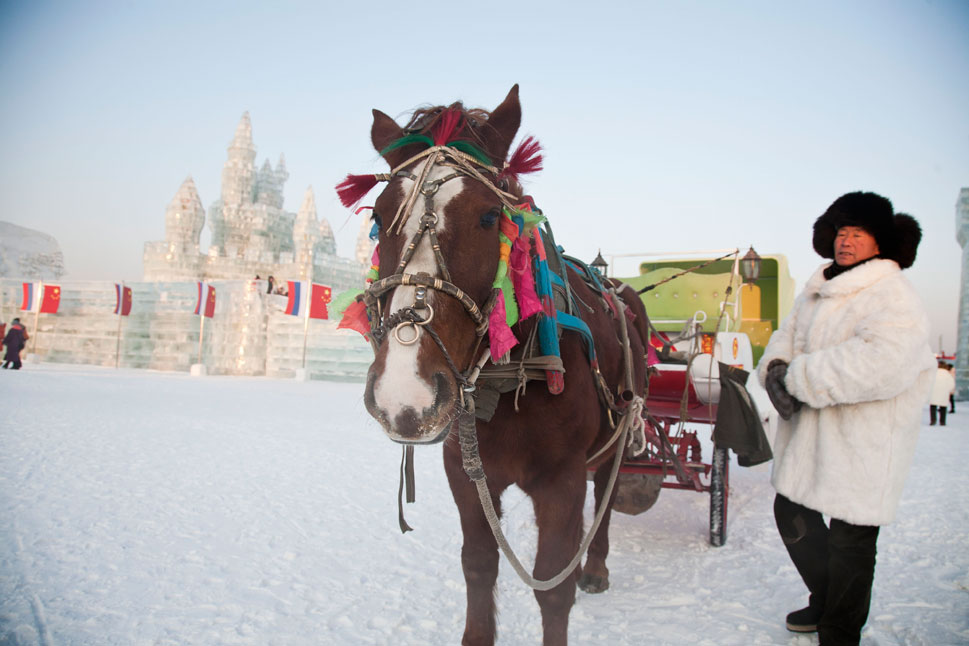 A horse and buggy stands ready to carry visitors through the snowy grounds.