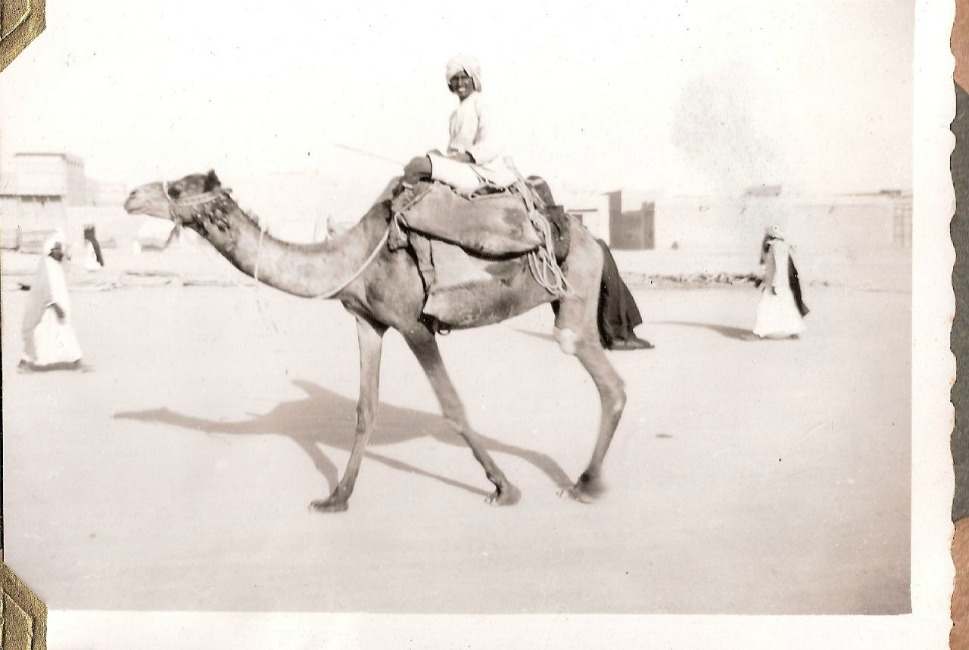 A man smiles while riding a camel in 1950.