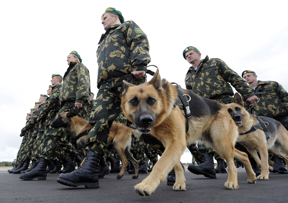 War Dogs Of The World Foreign Policy