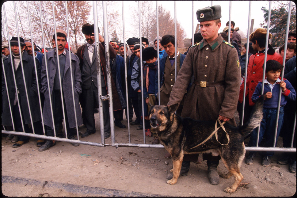 """In his book Dogs at War,  published in 1945, Lowell Thomas writes that """"nowhere have war dogs been  employed more spectacularly than in Russia."""" The Red Army """"trained as many as  50,000 dogs"""" toward the outset of World War II, most of which were used for  border patrol.      In war-dog history, Russia is notorious for having employed  army-tank dogs --basically canine suicide bombers. These dogs were kept hungry  and then trained to find food under tanks. They were strapped with explosives  or grenades and sent underneath enemy tanks -- with no expectation of survival.  """"As soon as the Germans heard the barking ... they frantically ... headed back to  their own lines,"""" Thomas writes.      Russia has been more humane and technologically advanced  with its modern military canines. After Moscow's Domodedovo airport  was bombed  in January 2011, President Dmitry Medvedev made  a push to outfit the army with more  remote-controlled sniffer dogs to help stave off terrorist attacks.      In this photo, a Russian soldier stands with a dog at  the Pianche border post on Dec. 28, 1992, in Tajikistan.      Photo by Malcolm Linton/Liaison"""