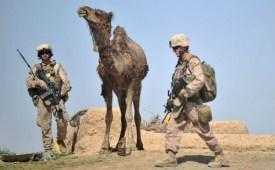 ADEK BERRY/AFP/GettyImages
