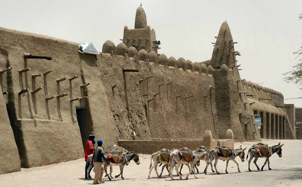 A team of donkeys walks past the mud walls of what was Sankore University. The minaret of the Sankore Mosque is in the center background.