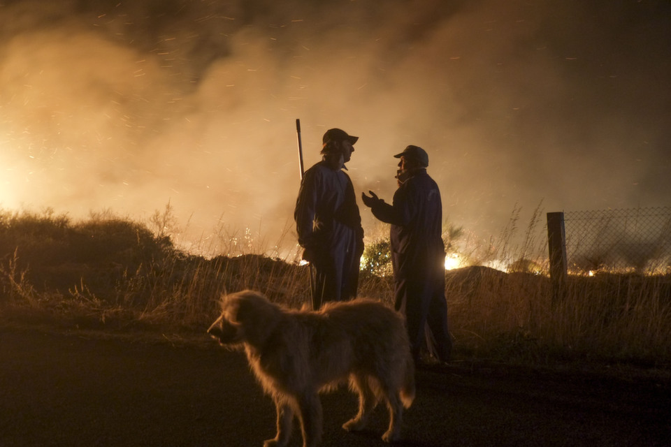 Two men and a dog wait at the site of a wildfire in Cualedro, near  Ourense on Aug. 24, 2013.       PEDRO ARMESTRE/AFP/Getty Images
