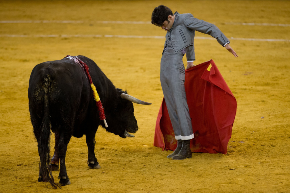 Spanish bullfighter  Alejandro Talavante performs during the Bullfighting Charity Festival in Madrid  at at Palacio Vistalegre Arena bullring on March 22, in Madrid, Spain.       Gonzalo Arroyo  Moreno/Getty Images
