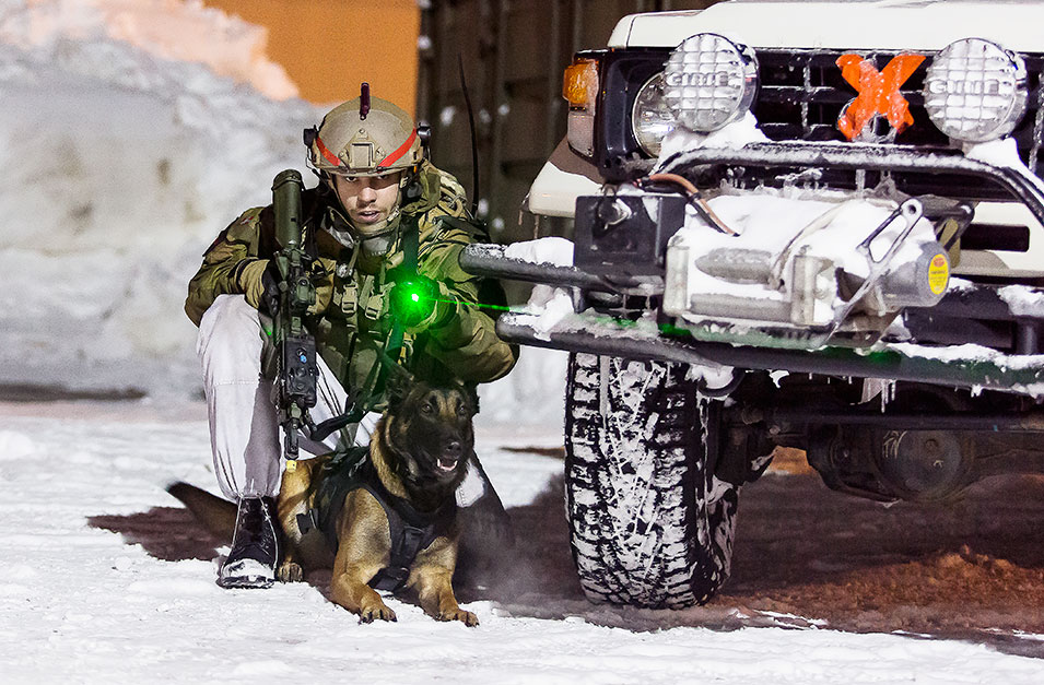 A Norwegian soldier uses a laser pointer to mark where his explosive-detection dog should search.       Simen Rudi, Norwegian  Armed Forces