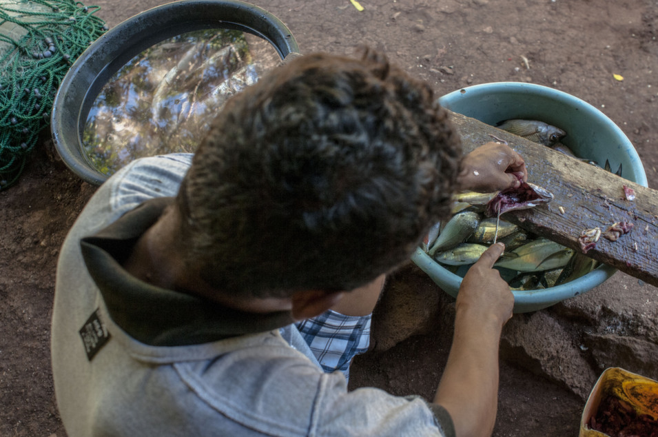 A member of the Roda family scales fish on the island of Exposición, where they have lived for generations.