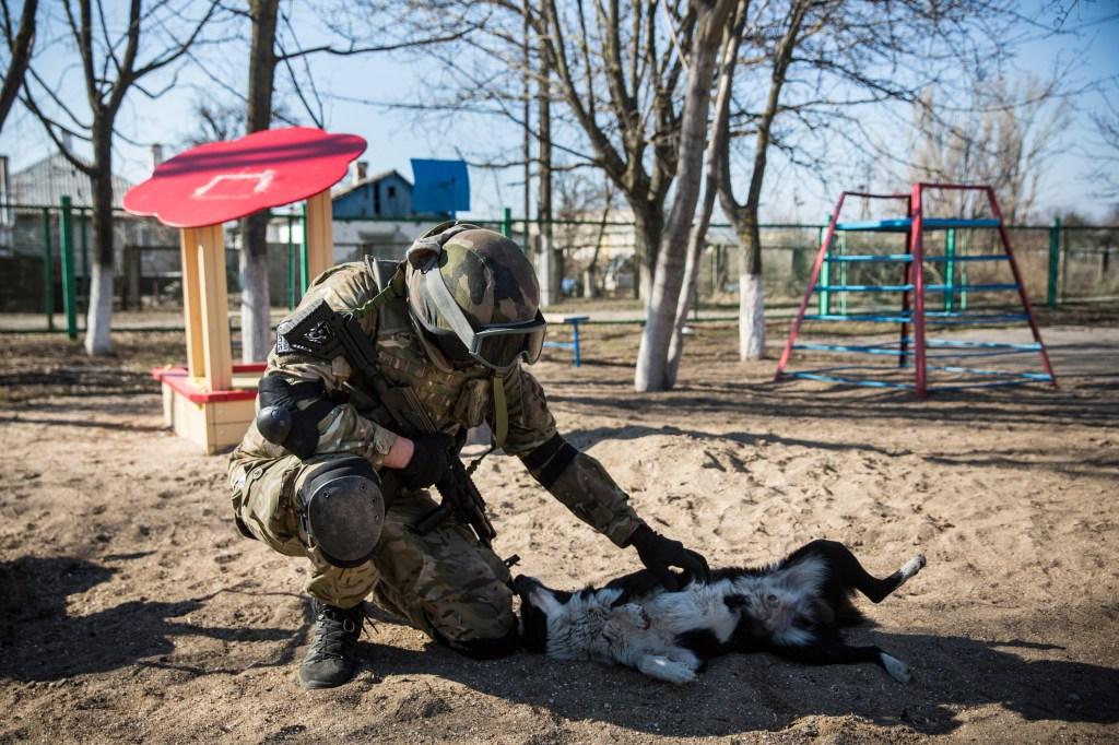 <> on March 9, 2015 in Mariupol, Ukraine.