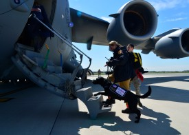 Nepal earthquake relief effort gets needed supplies from US Air Force