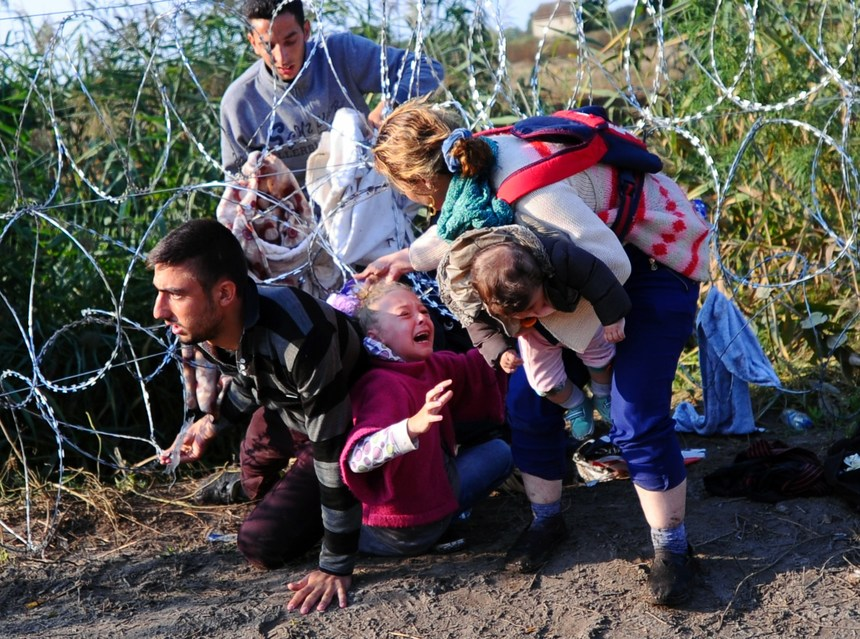 "A young migrant's hair becomes stuck while crawling under a barbed fence with her family at the Hungarian-Serbian border near Roszke, on August 27, 2015. As Europe struggles with its worst migrant crisis since World War II, Hungary has become, like Italy and Greece, a ""frontline"" state. So far this year, police say around 141,500 migrants have been intercepted crossing into Hungary, mostly from neighbouring Serbia.  AFP PHOTO / ATTILA KISBENEDEK        (Photo credit should read ATTILA KISBENEDEK/AFP/Getty Images)"