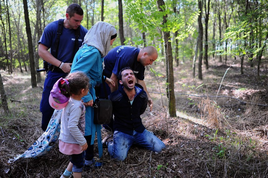 A father of a migrants family is arrested by the local police near the village of Roszke on the Hungarian-Serbian border on August 28, 2015 . As Europe struggles with its worst migrant crisis since World War II, and Hungarian police has  so far this year intercepted some 141,500 migrants crossing into Hungary, mostly from neighboring Serbia.   AFP PHOTO / ATTILA KISBENEDEK        (Photo credit should read ATTILA KISBENEDEK/AFP/Getty Images)