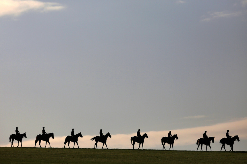 NEWMARKET, ENGLAND - SEPTEMBER 25:  Morning exercise on the gallops at Newmarket on September 25, 2015 in Newmarket, England. (Photo by Alan Crowhurst/Getty Images)