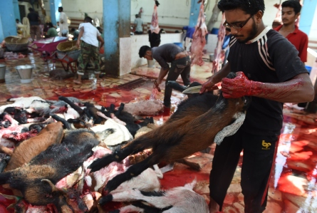 Pakistani men slaughter a goat during the Eid al-Adha festival in Karachi on September 25, 2015. Muslims across the world celebrate the annual festival of Eid al-Adha, or the Festival of Sacrifice, which marks the end of the Hajj pilgrimage to Mecca and in commemoration of Prophet Abraham's readiness to sacrifice his son to show obedience to God. AFP PHOTO/ Asif HASSAN (Photo credit should read ASIF HASSAN/AFP/Getty Images)