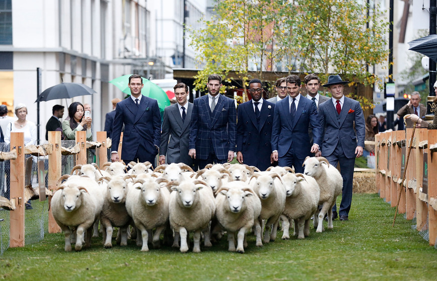The Campaign for Wool marks the beginning of UK national Wool Week by hosting one of the largest public events on one of London's most renowned streets, Savile Row at Saville Row on October 5, 2015 in London, England.