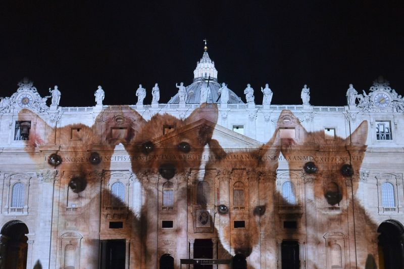 A picture is projected on the cupola of St. Peters Basilica during the show Fiat Lux : Illuminating Our Common Home, on December 8, 2015 at the Vatican. Images by some of the world's greatest environmental photographers, including Sebastião Salgado, Joel Sartore, Yann Arthus-Bertrand and Louie Schwartzberg, are projected in solidarity with COP21 talks in Paris. It is also part of the inauguration of the Roman Catholic Churchs yearlong Jubilee of Mercy, which starts today.  AFP PHOTO / TIZIANA FABI / AFP / TIZIANA FABI        (Photo credit should read TIZIANA FABI/AFP/Getty Images)