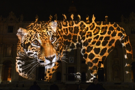 A picture is projected on St. Peters Basilica during the show Fiat Lux : Illuminating Our Common Home, on December 8, 2015 at the Vatican. Images by some of the world's greatest environmental photographers, including Sebastião Salgado, Joel Sartore, Yann Arthus-Bertrand and Louie Schwartzberg, are projected in solidarity with COP21 talks in Paris. It is also part of the inauguration of the Roman Catholic Churchs yearlong Jubilee of Mercy, which starts today. AFP PHOTO / TIZIANA FABI / AFP / TIZIANA FABI (Photo credit should read TIZIANA FABI/AFP/Getty Images)