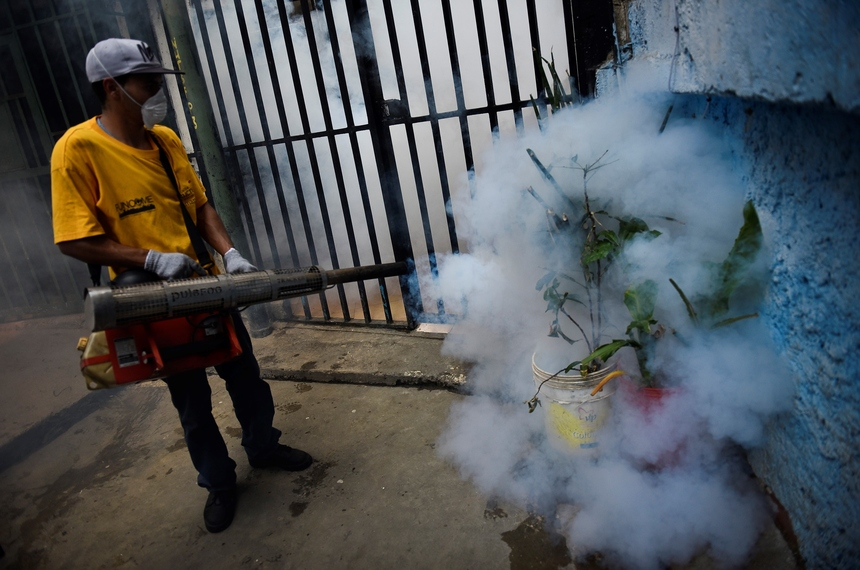 VENEZUELA, CARACAS - FEBRUARY 03: A Health employee fumigates vegatation against Aedes Aegypti mosquito in Petare slum at east of Caracas on February 3, 2016. Venezuela has recorded 4,700 suspected  cases of people infected by the Zika virus according to spokespersons, which is thought to cause brain damage in babies. (Photo by Carlos Becerra/Anadolu Agency/Getty Images)