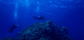 SHARM EL SHEIKH, EGYPT - OCTOBER 27: A pair of SCUBA divers swim over coral during a guided dive on October 27, 2013 in the Red Sea near the resort town of Sharm El Sheikh, Egypt. Sharm el-Sheikh, lying on the Red Sea coast in Egypt's South Sinai governorate, is one of Egypt's most popular destinations for tourists. Egypt's tourist industry has struggled since a popular uprising overthrew President Hosni Mubarak in early 2011, and tourist numbers have taken a further dive since the Egyptian Military's overthrow of the country's first democratically elected President, Mohammed Morsi in July 2013. Sharm el-Sheikh, popular for its beachfront resorts and water sports including SCUBA diving, has faired better than some other tourist spots in the Egypt, with major hotels reporting roughly 20% occupancy during the resort's busy summer season. (Photo by ).