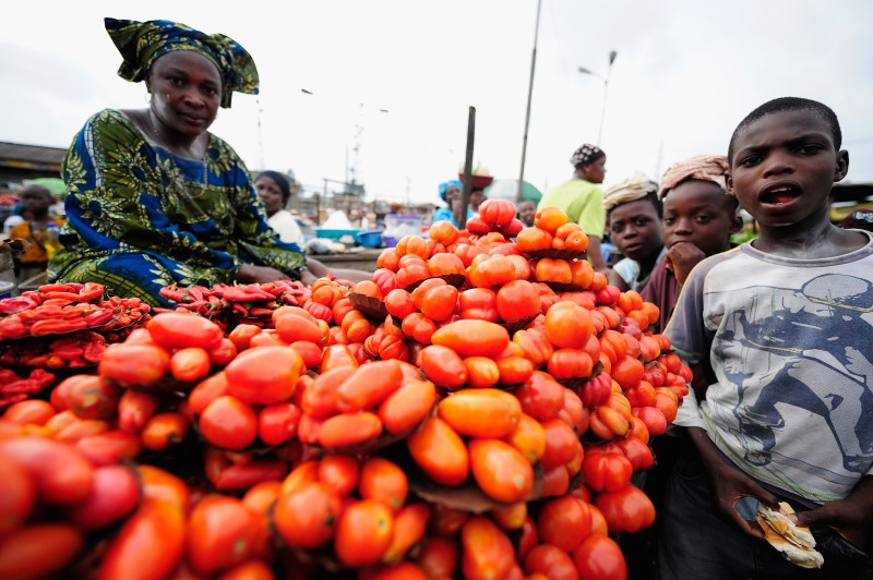 IJEBU-ODE, NIGERIA - NOVEMBER 03:  A Nigerian woman sells tomatoes and chillies in an Ijebu-Ode market on November 3, 2009 in Ijebu-Ode, Nigeria.  (Photo by Jamie McDonald - FIFA/FIFA via Getty Images)