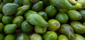CARTAGENA, COLOMBIA - 2012/04/29: Close-up of Avocados in the Getsemani area of Cartagena, Colombia. (Photo by Wolfgang Kaehler/LightRocket via Getty Images)