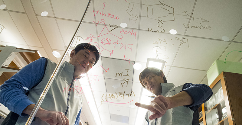 Scientists working at TRI-I TDI