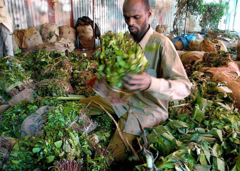How Much Does It Cost for Somalia to Ban Khat for a Week