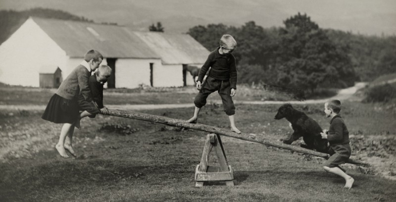 a_dog_plays_on_a_seesaw_with_children_in_scotland