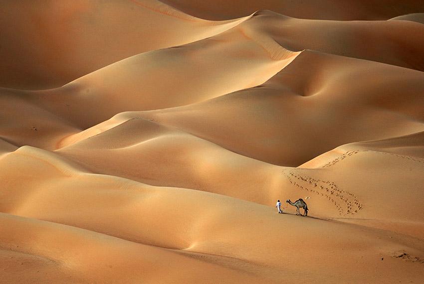 TOPSHOT - An Emirati man walks with his camels across the Hameem desert, some 170 kilometres west of the Gulf Emirate of Abu Dhabi, on February 24, 2017. / AFP / KARIM SAHIB        (Photo credit should read KARIM SAHIB/AFP/Getty Images)