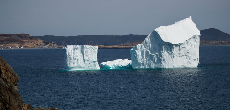 iceberg crop