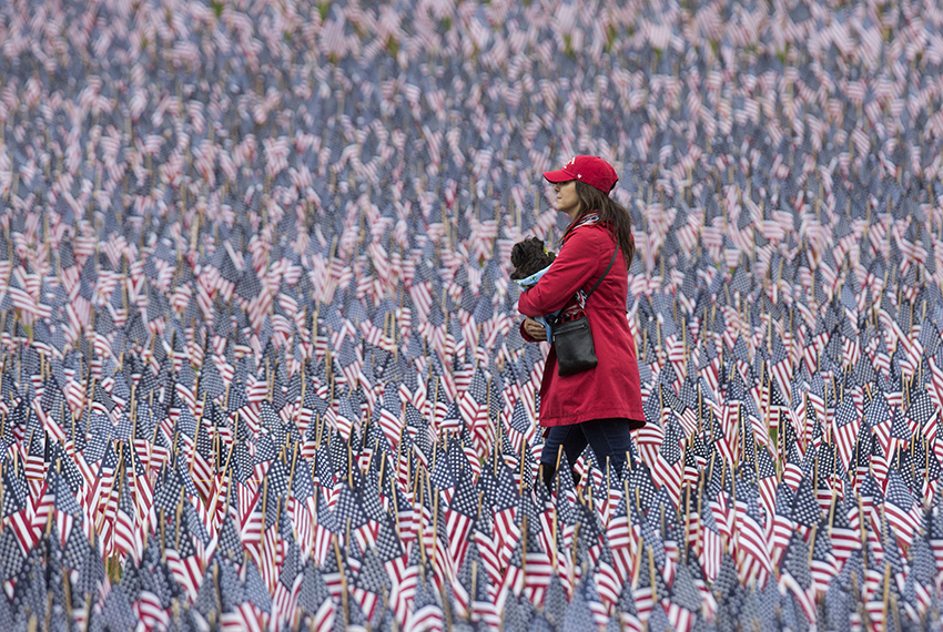 BOSTON, MA - MAY 29:  A woman holding a dog walks past the 37,252 flags placed on the Boston Common to honor the number of lost Massachusetts military members on May 29, 2017 in Boston, Massachusetts. In an annual tradition, volunteers plant tens of thousands of flags on the Boston Common for Memorial Day. (Photo by Scott Eisen/Getty Images)