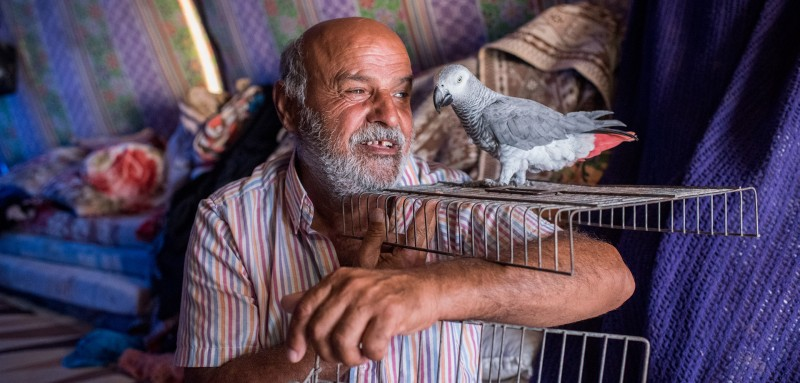 Kasim Muhammed Tahir and his pet bird Abboud