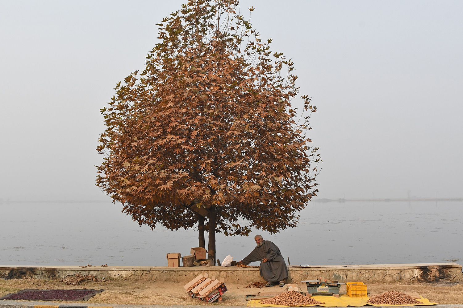 A Kashmiri vendor selling walnuts waits for customers on the banks of Dal Lake in Srinagar on November 8, 2017. (Tauseef Mustafa/AFP/Getty Images)