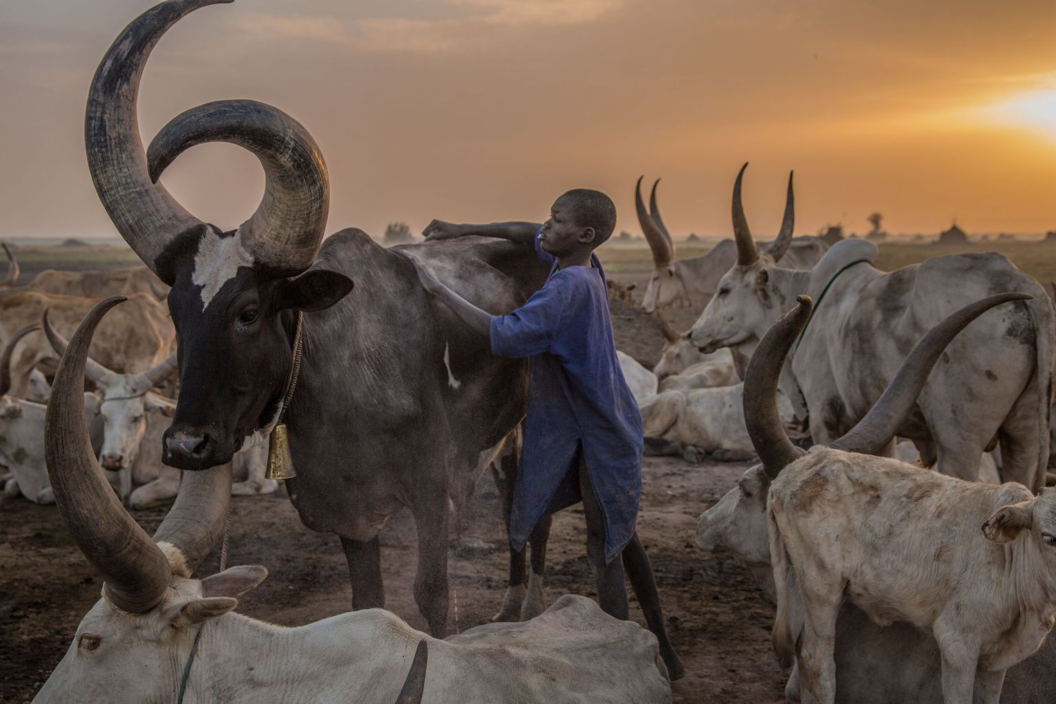 TOPSHOT - ASudanese boy from Dinka tribe tends a cow in the early morning at their cattle camp in Mingkaman, Lakes State, South Sudan on March 4, 2018. During South Sudans dry season between December and May, pastoralists from the highlands move to the lowlands and close to the Nile, where they set up big cattle camps to make sure their animals are close to grazing land.  / AFP PHOTO / Stefanie GLINSKI        (Photo credit should read STEFANIE GLINSKI/AFP/Getty Images)