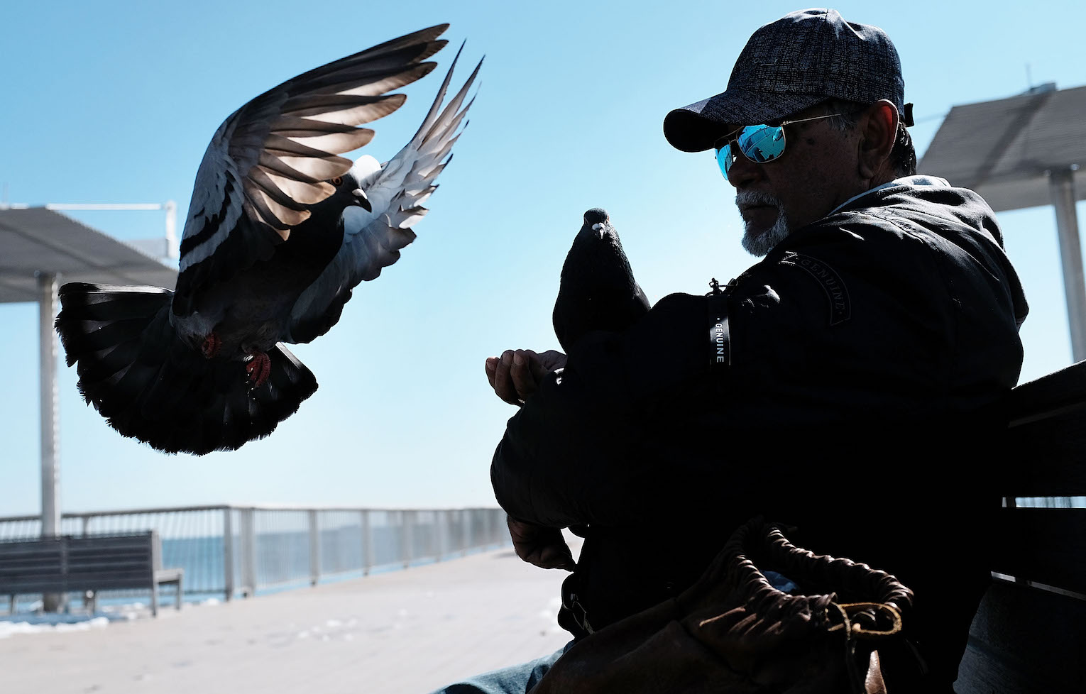 """Poggi"" feeds the pigeons along the Coney Island boardwalk on a spring afternoon on March 23, in New York City. (Spencer Platt/Getty Images)"
