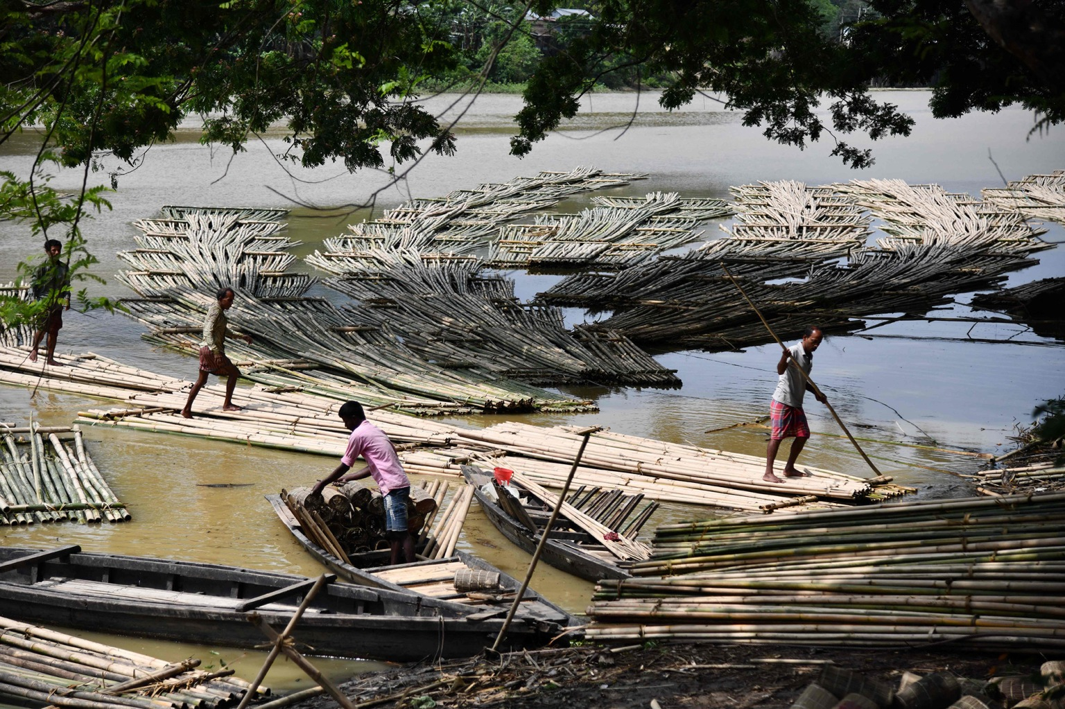 Laborers push heaps of bamboo along the Howrah River to be used in the construction industry and sold at a floating market in Chakmaghat, India, a village north of the capital of the northeastern state of Tripura on April 23. BIJU BORO/AFP/Getty Images