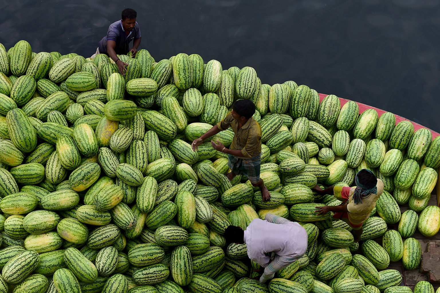 Bangladeshi workers unload watermelons from a boat in the Buriganga River on April 29. Hundreds of vendors from the countryside come to the Bangladeshi capital to sell their fruits. MUNIR UZ ZAMAN/AFP/Getty Images