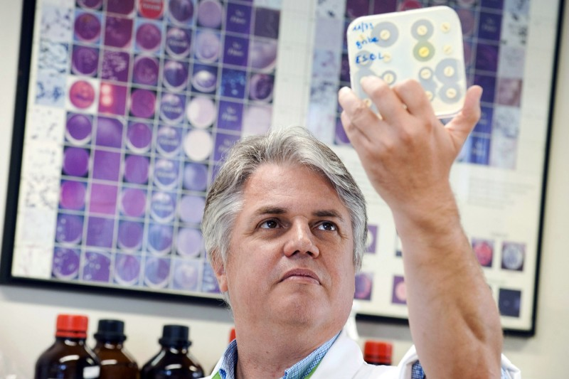Denis Pierard, a specialist in microbiology and virology in Brussels, holds up a dish of bacteria culture in a microbiology lab on August 13, 2010. The researcher was studying the death of a Belgian man killed by a drug-resistant superbug that originated in South Asia. (Benoit Doppagne/AFP/Getty Images)