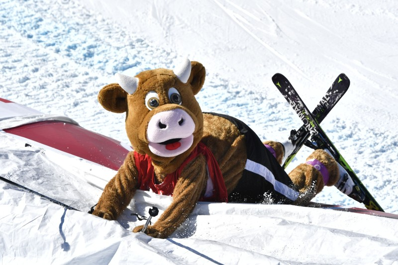 A skier wearing a cow costume arrives in the finish area before the second run of the women's slalom race at the FIS Alpine World Ski Championships in St. Moritz, Switzerland on Feb. 18, 2017. (Dimitar Dilkoff/AFP/Getty Images)
