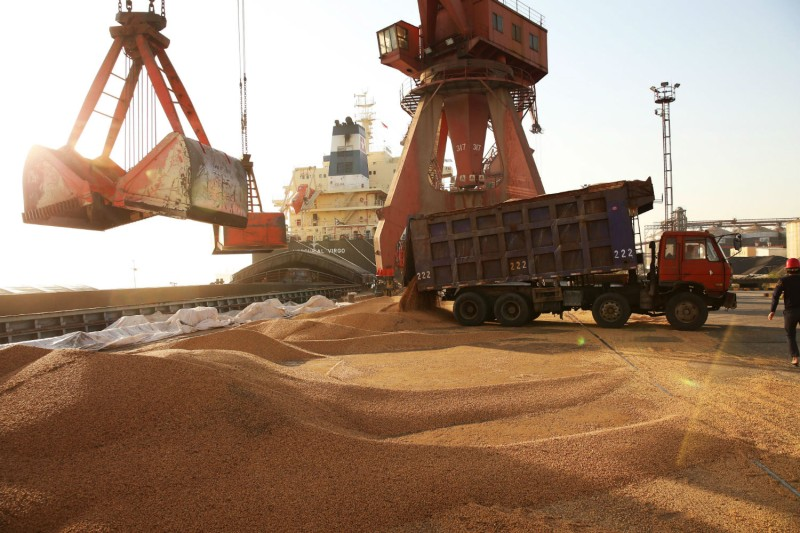 Workers transferring soybeans at a port in Nantong, China on April 9. (AFP/Getty Images)