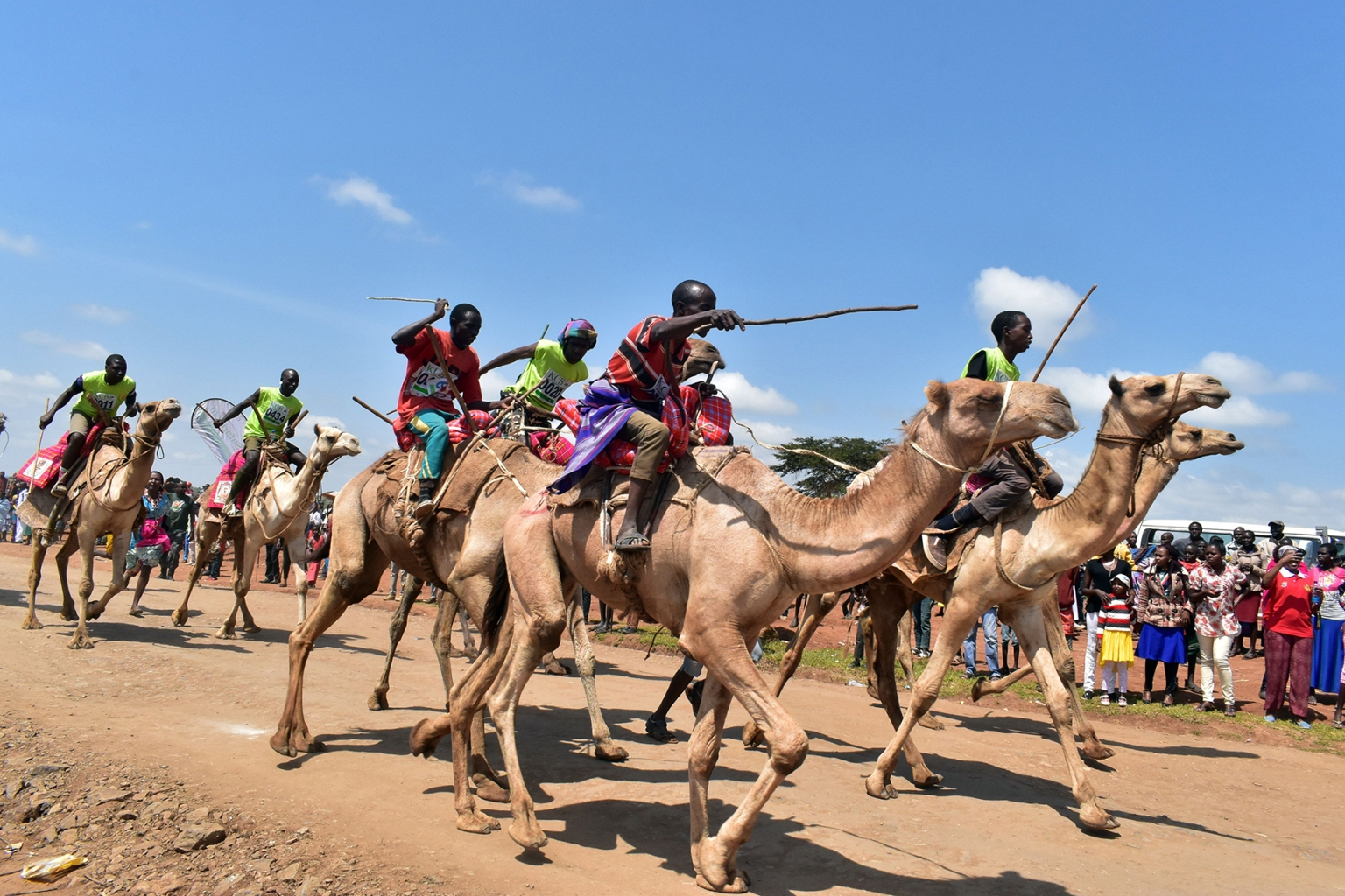 Racers compete in the Maralal International Camel Derby in Samburu County, Northern Kenya, on Sept. 2.The annual event is Kenya's most prestigious camel race, attracting international and local competitors in amateur and professional categories who are breathing life into the remote desert town. ANDREW KASUKU/AFP/Getty Images