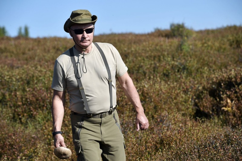 Russian President Vladimir Putin forages for mushrooms during a visit to Tuva, in southern Siberia, on Aug. 26. (Alexey Nikolsky/AFP/Getty Images)