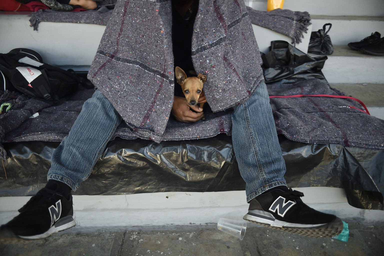 A migrant headed toward the United States holds his dog during a stop at a temporary shelter in a sports center in Mexico City on Nov. 5. ALFREDO ESTRELLA/AFP/Getty Images