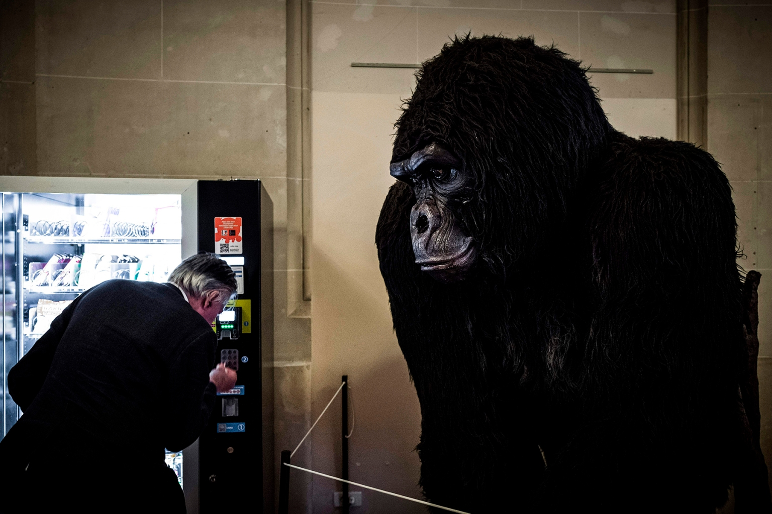 A man buys a snack from a vending machine next to a gorilla effigy in a corridor of the Palais de la Decouverte in Paris on Nov. 6. The science museum contains permanent exhibits for astronomy, physics, mathematics, geology, chemistry, and biology. PHILIPPE LOPEZ/AFP/Getty Images
