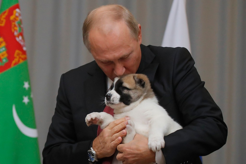 Russian President Vladimir Putin kisses a Turkmen shepherd dog, locally known as Alabai, received from Turkmenistan's President Gurbanguly Berdimuhamedov during a meeting in Sochi, Russia, on Oct. 11, 2017.  (Maxim Shemetov/AFP/Getty Images)